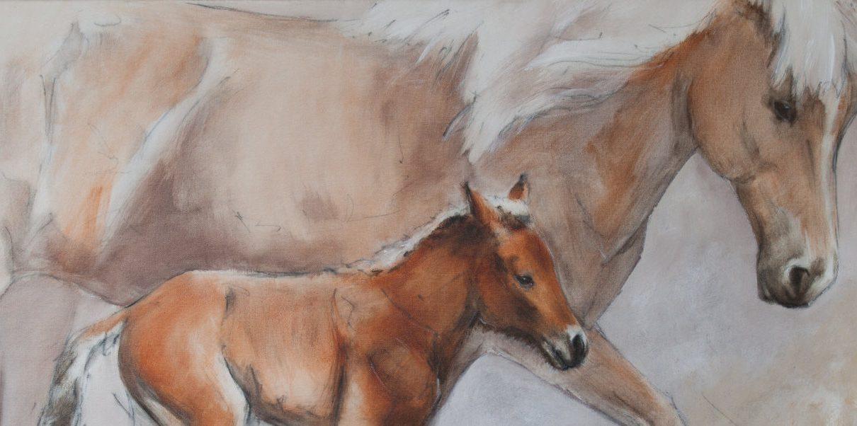 Pferdebilder 1210x602 - Pferdebilder von Thomas Aeffner