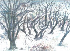 Guenter Grass Baumlandschaft im Winter 300x219 - Die Algraphie - Günter Grass oder grafische Techniken im Wandel